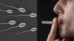 men infertility