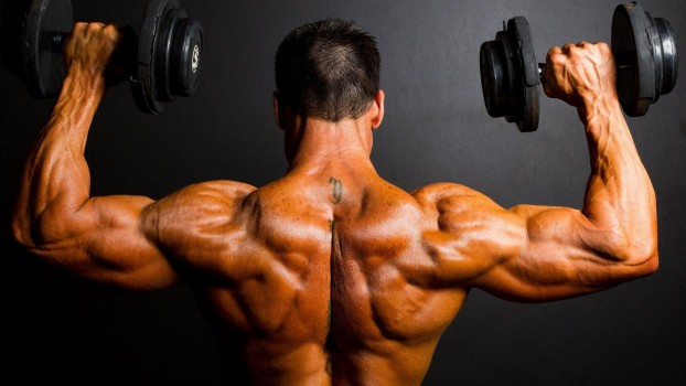 Nolvadex by itself bodybuilding workouts